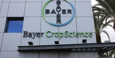 Lavorare alla Bayer
